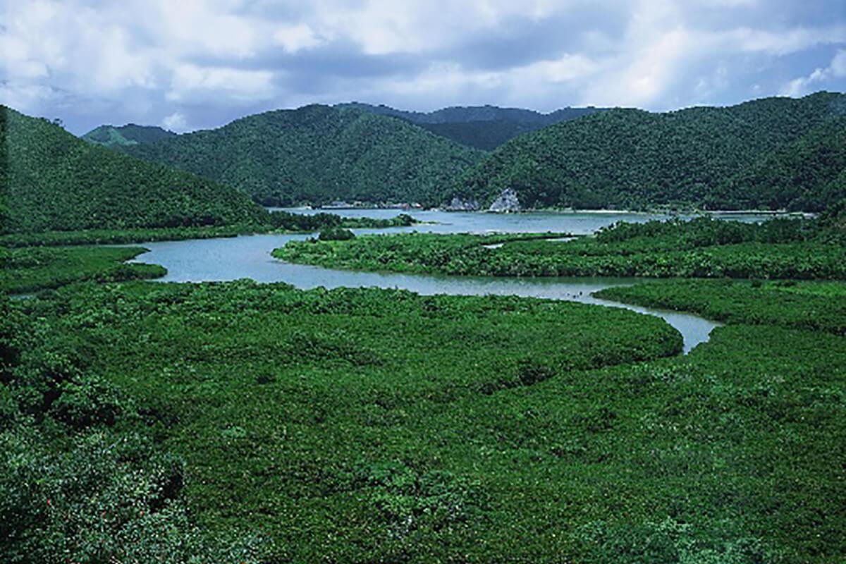 kagoshima 08