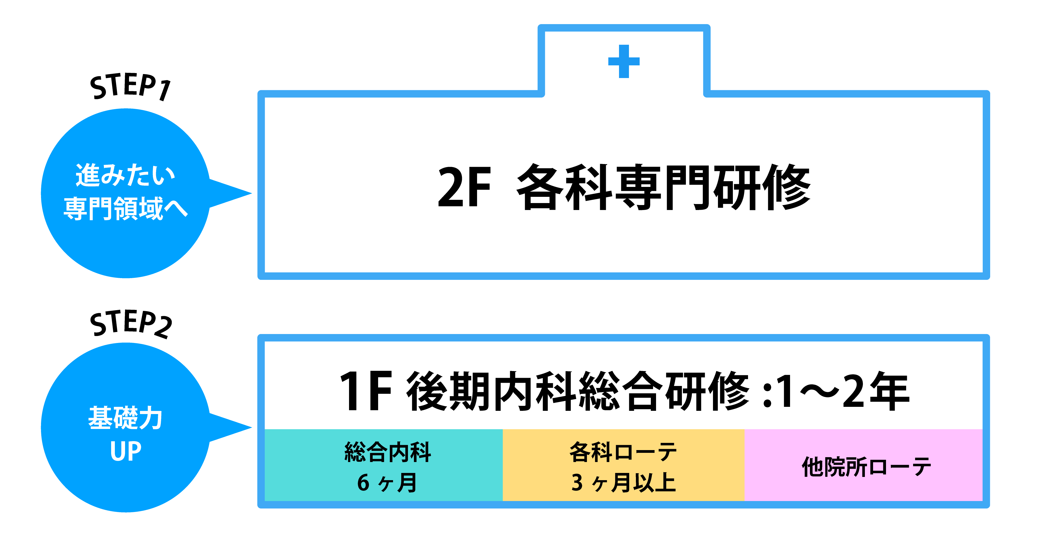 Transitional Year 研修